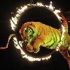 Цирки в Приволжье